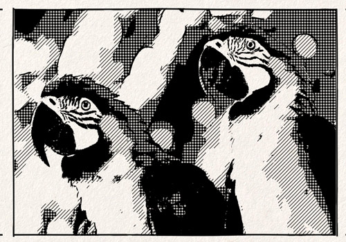 example of Halftone animation effect for video