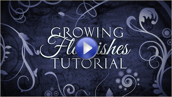 Growing Flourishes After Effects Tutorial